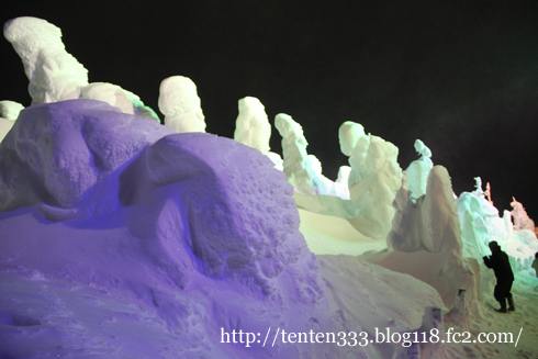 蔵王樹氷-2_e