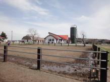 マザー牧場 2010・4・11