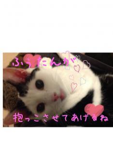 image_20130218223958.jpg