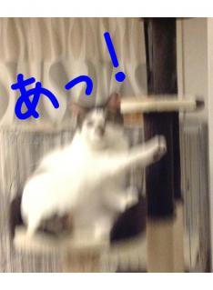 image_20130303222459.jpg