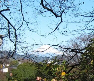 寒そうな富士山