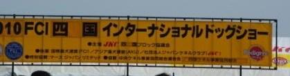 IMGP2144.jpg