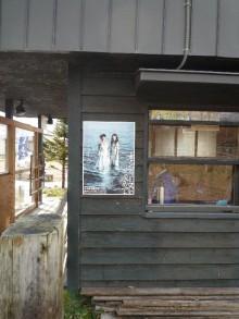 てるブロ-拾ってきた家のポスター