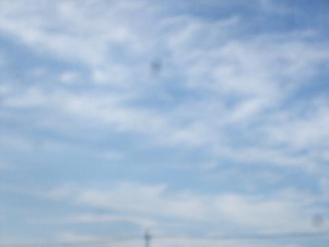 2012_09090007.jpg