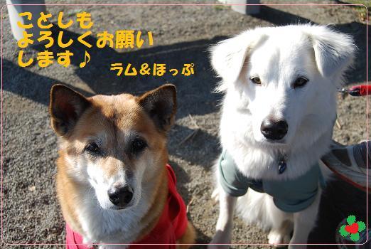 0105-01_20120105112449.jpg