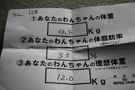 1010-10.jpg