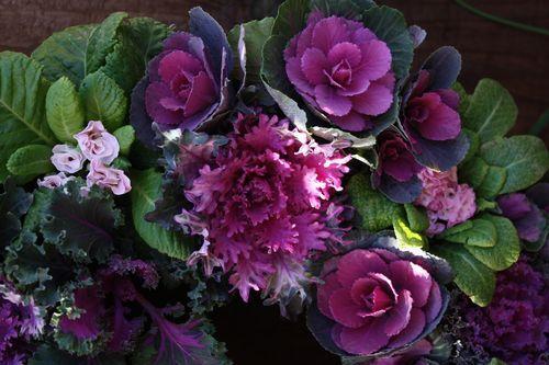 T's Garden Healing Flowers‐ミニ葉ボタンのリース