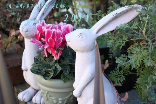 T's Garden Healing Flowers‐T's Garden Healing Flowers‐Gシクラメン