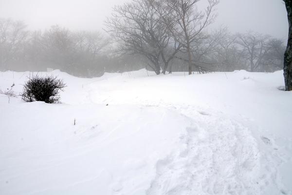 蛭ヶ岳24