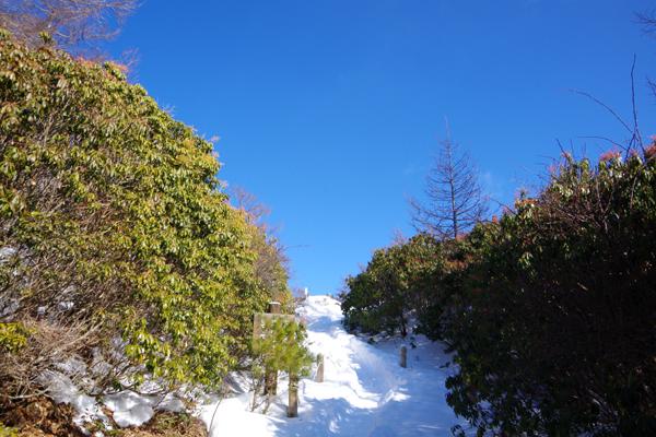 蛭ヶ岳26