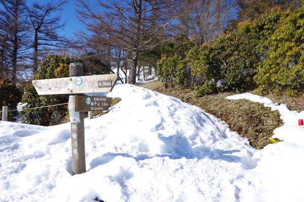蛭ヶ岳27