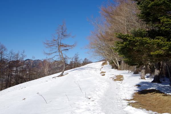 雲取山09
