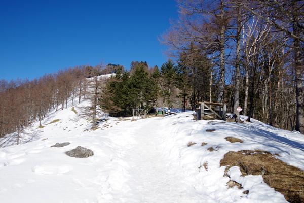 雲取山12