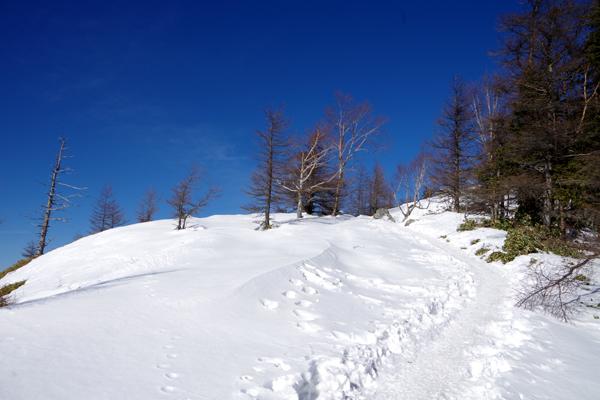 雲取山14