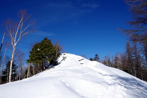 雲取山17
