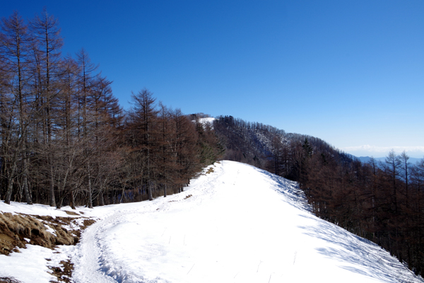 雲取山26