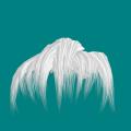 髪の毛前髪