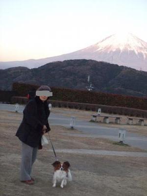babaとティアラ富士