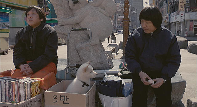 2012真紅デミー賞2