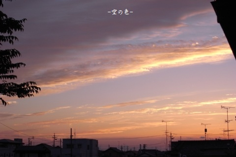 ピンクの夕空