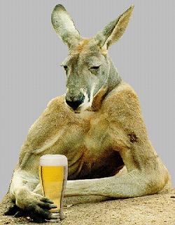 kangaroo treehugger