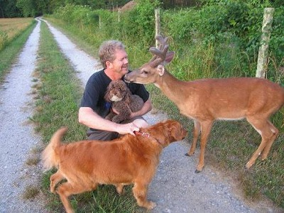 dog-deer-7.jpg