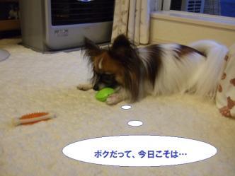 04-04_20101005183327.jpg