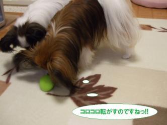 04-07_20101005183358.jpg
