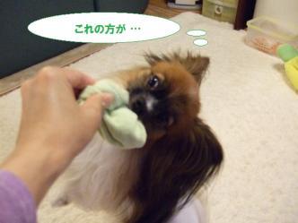 04-11_20101005183446.jpg