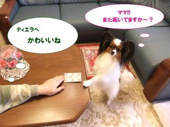 04-14_20110105122432.jpg