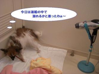06-09_20100208213758.jpg