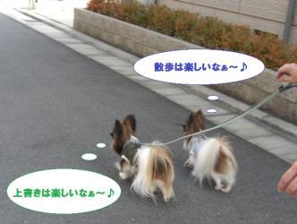 09-04_20100223092256.jpg