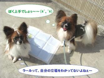 09-07_20100223092415.jpg