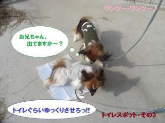09-11_20100223092546.jpg