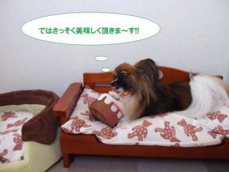 13-05_20101013194826.jpg