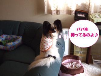 14-02_20100214190458.jpg