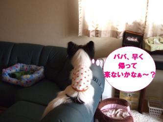 14-03_20100214190510.jpg