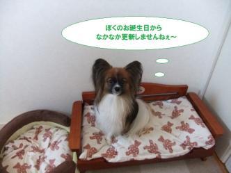 14-03_20101214125718.jpg