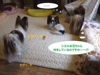 14-04_20100514205012.jpg