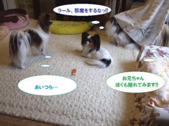 14-06_20100514205036.jpg