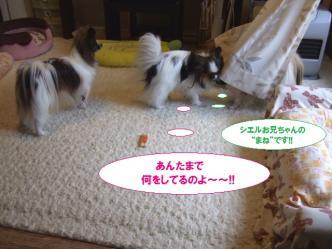 14-07_20100514205048.jpg