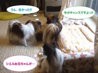 14-09_20100514205111.jpg