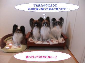 14-09_20101214125742.jpg