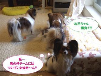 14-10_20100514205121.jpg