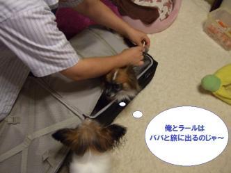 20-04_20100920204340.jpg