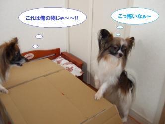22-02_20100323230318.jpg
