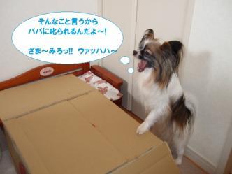 22-03_20100323230333.jpg