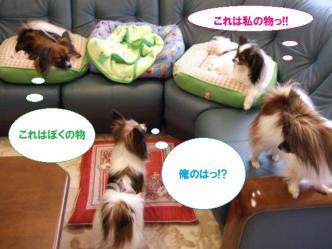 22-09_20100323230449.jpg