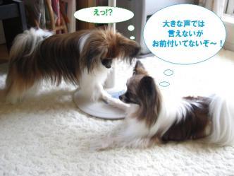 27-08_20100704231807.jpg