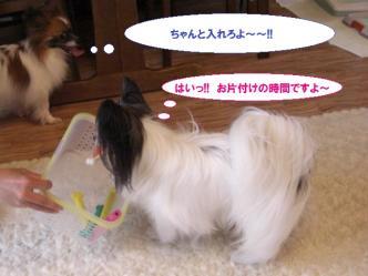 27-11_20100602095311.jpg
